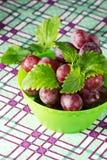 Rode druif met munt Stock Afbeelding