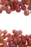 rode druif voor frame Stock Foto's
