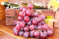 Rode druiven Stock Foto
