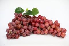 Rode Druiven Royalty-vrije Stock Foto's