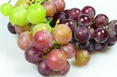 Rode druiven die op witte achtergrond worden geïsoleerda Stock Afbeelding