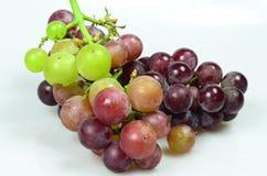 Rode druiven die op witte achtergrond worden geïsoleerda Stock Foto's