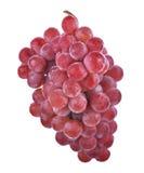 Rode druiven die op witte achtergrond worden geïsoleerda Stock Afbeeldingen
