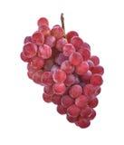 Rode druiven die op witte achtergrond worden geïsoleerda Royalty-vrije Stock Foto's