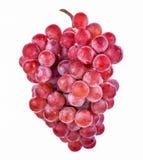 Rode druiven die op witte achtergrond worden geïsoleerda Royalty-vrije Stock Afbeeldingen