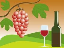 Rode druiven en wijn Royalty-vrije Stock Afbeeldingen