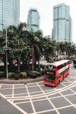 Rode dubbeldekkerbus die rond palmen overgaan stock foto's