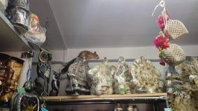 Rode eekhoorn die rond de winkel in paniek lopen stock footage
