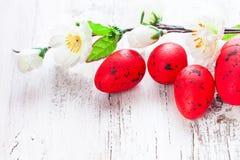 Rode eieren royalty-vrije stock afbeeldingen