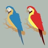 Rode en blauwe papegaaien Stock Foto