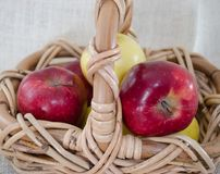 Rode en gele appelen Stock Foto's