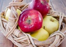 Rode en gele appelen Royalty-vrije Stock Fotografie