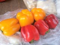 Rode en gele gekleurde Spaanse pepers Stock Foto's