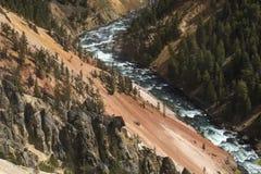 Rode en gele klippen van de Yellowstone-Rivier, Wyoming Stock Fotografie