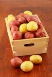 Rode en gele nieuwe aardappels Stock Afbeeldingen