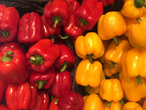 Rode en gele paprika Royalty-vrije Stock Foto's