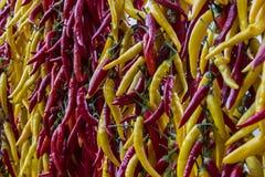 Rode en gele Spaanse peper Stock Foto