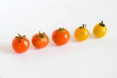 Rode en gele tomaten in rij Royalty-vrije Stock Afbeeldingen