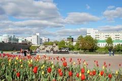 Rode en gele tulpen op de achtergrond van cityscape met wolken stock afbeeldingen
