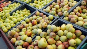 Rode en groene appelvruchten in een supermarkt de verse achtergrond van de appelenopslag royalty-vrije stock afbeeldingen
