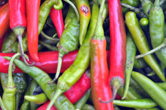 Rode en groene chilis Royalty-vrije Stock Foto's