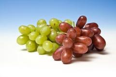 Rode en groene druiven Stock Afbeelding