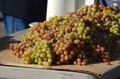 Rode en groene druiven bij een landbouwersmarkt Stock Foto's