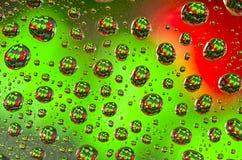 Rode en Groene Kerstbomen Stock Foto