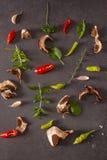 Rode en groene koele peper, kruiden en kruiden op een grijze backgroun Stock Fotografie