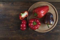 Rode en purpere paprika Royalty-vrije Stock Foto