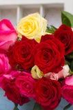 Rode en roze rozen op lijst Stock Foto's