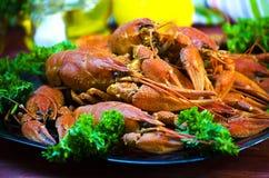 Rode en smakelijke gekookte rivierkreeften Stock Foto