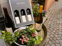 Rode en witte flessen wijn Stock Afbeeldingen
