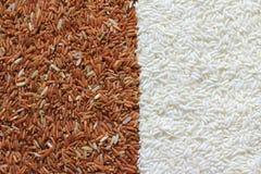 Rode en witte rijstkorrels Stock Foto