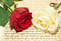 Rode en Witte Rozen Stock Afbeelding