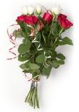 Rode en witte rozen Stock Foto