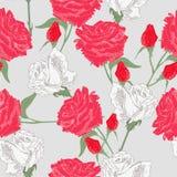 Rode en witte rozen Royalty-vrije Stock Foto