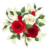 Rode en witte rozen en lisianthusbloemen Vector illustratie Stock Afbeelding