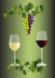 Rode en witte wijn vector illustratie
