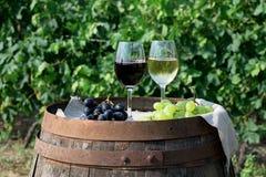 Rode en witte wijn met druiven in aard Stock Afbeeldingen