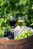 Rode en witte wijn met druiven in aard royalty-vrije stock afbeeldingen