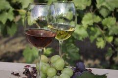 Rode en witte wijnen Royalty-vrije Stock Foto