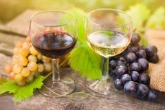 Rode en witte wijnglazen Royalty-vrije Stock Afbeeldingen