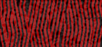 Rode en zwarte tijgeraf:drukken Stock Fotografie