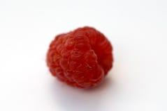 Rode framboos Stock Afbeelding