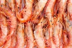 Rode garnalenmarkt Royalty-vrije Stock Afbeelding