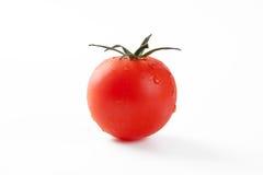Rode geïsoleerde tomaat stock afbeelding