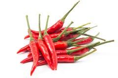 Rode geïsoleerdea Spaanse peperpeper Stock Afbeeldingen