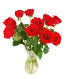 Rode geïsoleerdec rozen Stock Afbeeldingen