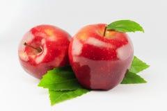 Rode geïsoleerdee appel Stock Afbeeldingen